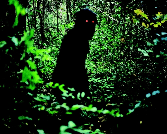 boonmee3