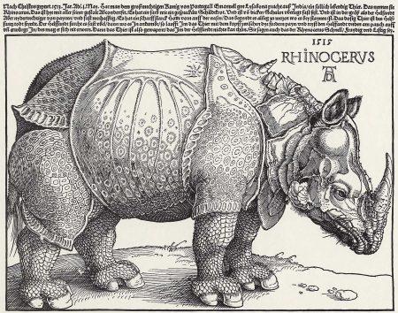 Dürers Rhinozeros (Druck von Holzschnitt)