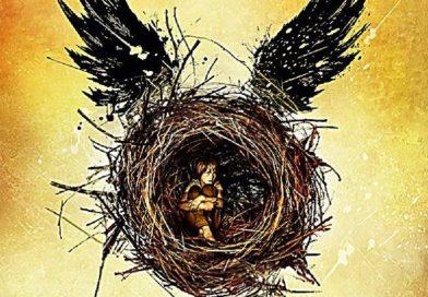 """J.K. Rowling: """"Harry Potter und das verwunschene Kind"""""""