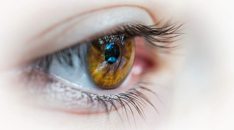 human eye - Photo by Patrick Brinksma on Unsplash